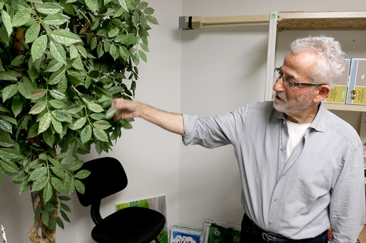 MARIO BARTEL/THE TRI-CITY NEWS Cosimo Geracitano paints the name of each master painter he's recreated on the leaves of an artificial tree in the basement of his Coquitlam home.