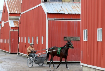 MARIO BARTEL/THE TRI-CITY NEWS Chris Lancaster heads back to the barns at Fraser Downs after working out one of his horses. It's been more than 30 years since I had the opportunity to photograph a horse racing story, so I relished the chance to soak in the atmosphere and characters at Fraser Downs while spending a morning with local trainer and racer, Chris Lancaster.