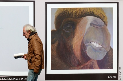 MARIO BARTEL/THE TRI-CITY NEWS A passerby seems to invoke a sneer from a painting for a camel that is part of a new public art installation at Ioco Road and Barnet Highway in Port Moody. The project features works by artists that belong to the Esplanade Artists Studio and camoflouges a temporary parking lot required by TransLink to accomodate parking displaced by its construction of a new storage facility for 30-40 SkyTrain cars just west if Falcon Drive in Coquitlam. I'd been trying to figure out what to do with the art banners affixed to fencing near the Moody Centre SkyTrain station for several days, then just decided to stake it out one afternoon for about 30 minutes. The similarity between the passerby and the painting behind him was just a serendipidous accident.